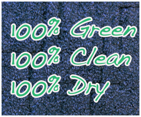 volusia county Dry Carpet Cleaning